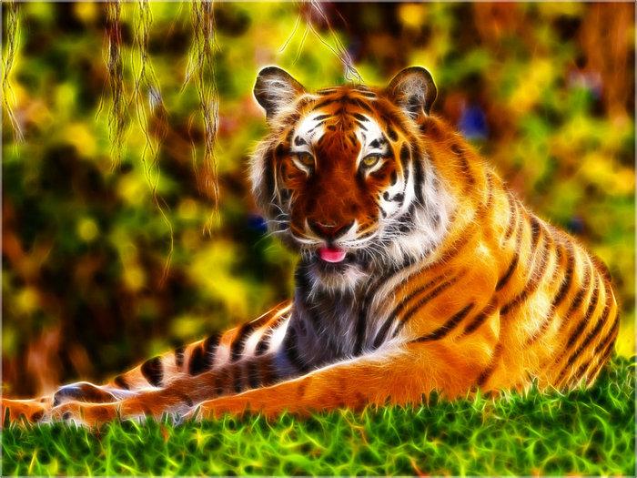 Fractal_Tiger_3_Wallpaper_by_PimArt (700x525, 126Kb)