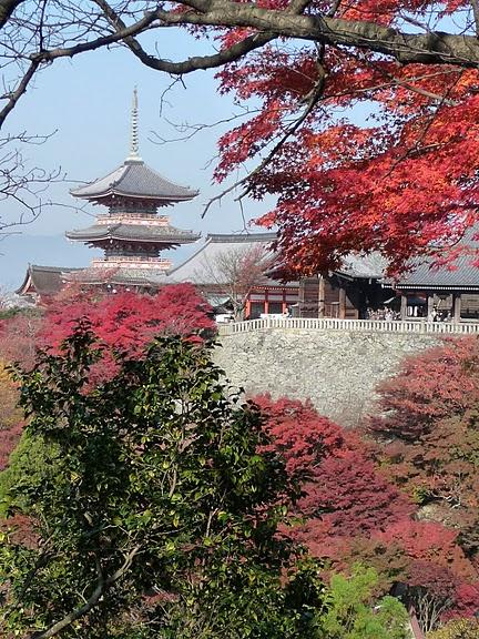 Киёмидзу-дэра - храм для всех. 56193