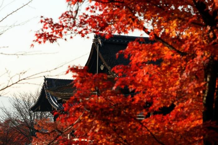 Киёмидзу-дэра - храм для всех. 43702