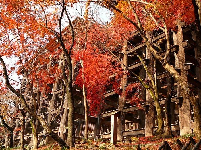 Киёмидзу-дэра - храм для всех. 11586