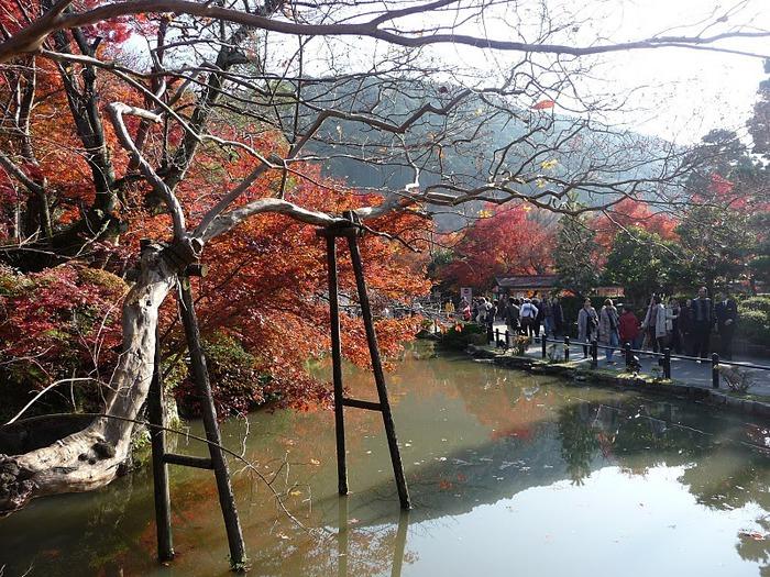 Киёмидзу-дэра - храм для всех. 80054