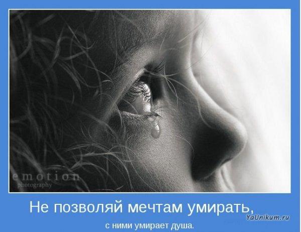 1302246305_1302125980_5a90eae59835 (600x462, 43Kb)