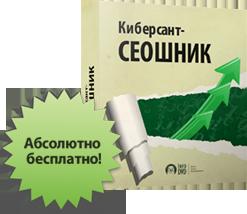 3479580_Kibersant_Seoshnik (247x214, 68Kb)
