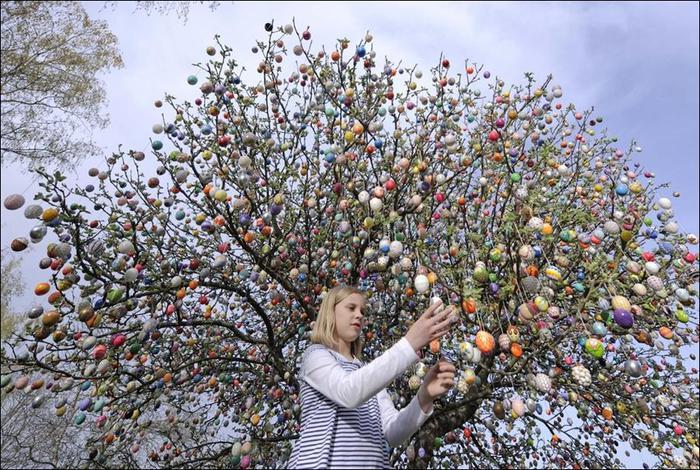 easter-eggs-tree-01 (700x470, 113Kb)