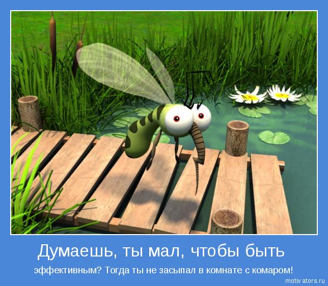 4171694_demotivator_komar (644x562, 527Kb)
