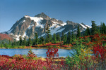 ������ Picture Perfect, Snoqualmie National Forest, Washington (700x466, 200Kb)