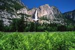 ������ Yosemite Falls, California (700x466, 216Kb)