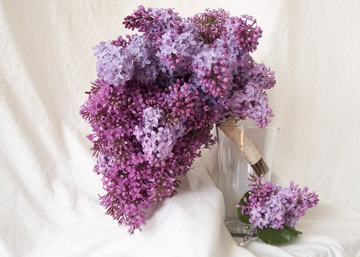 bouquet_flowers_461_10_m (525x375, 54Kb)