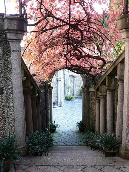 Дворец Борромео ( итал. Isola Bella - красивый остров ) 57481