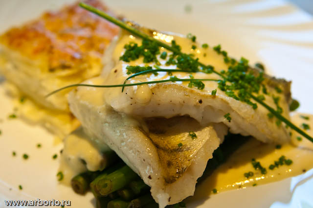 pike_perch_mornay (640x427, 82Kb)