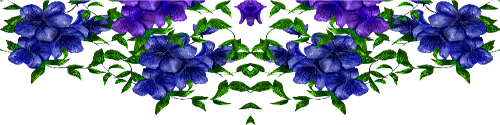 58c82c5eb91b (500x125, 121Kb)