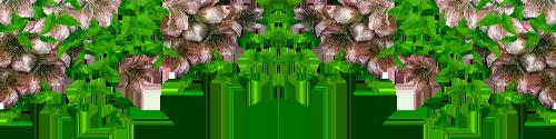 ceebd7cc8783 (500x125, 124Kb)