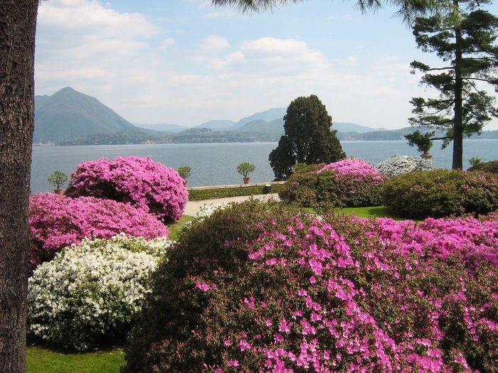 Дворец Борромео ( итал. Isola Bella - красивый остров ) 47310