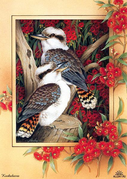 Награды.  Непередаваемой красоты серия птиц для вышивки крестом.  Все схемы в акробат-ридере+ картинка (JPEG+PDF) 11...