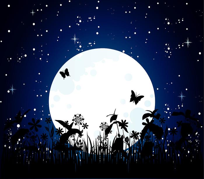moon_night_nebesnoe.info_ (700x612, 257Kb)