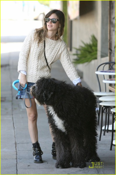rachel-bilson-walks-the-dog-04 (398x600, 57Kb)