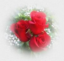 Розы для любимой мамы. mompic (208x198, 28Kb)