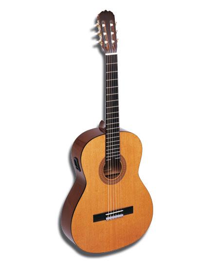 guitar (440x540, 20Kb)