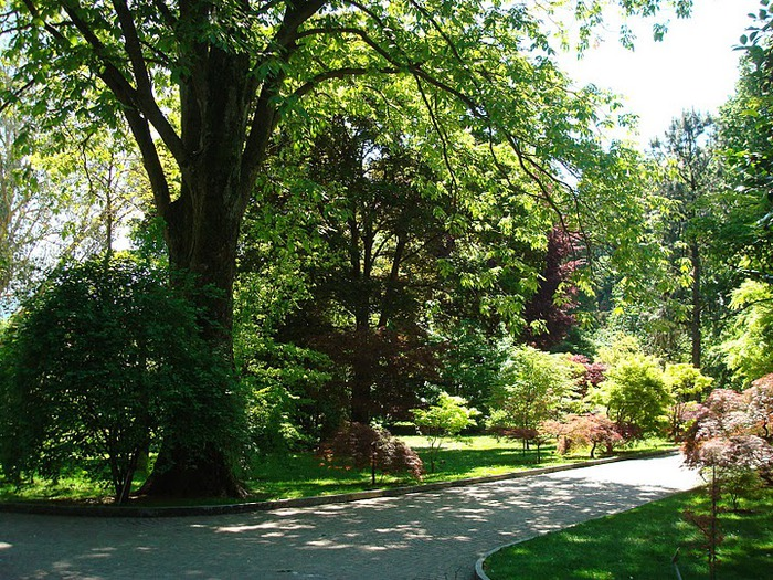 Сады Виллы Таранто 57138