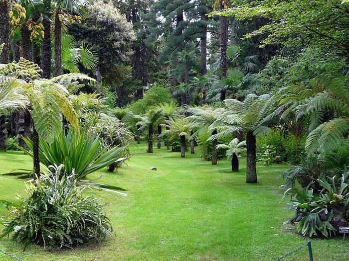 Сады Виллы Таранто 56322