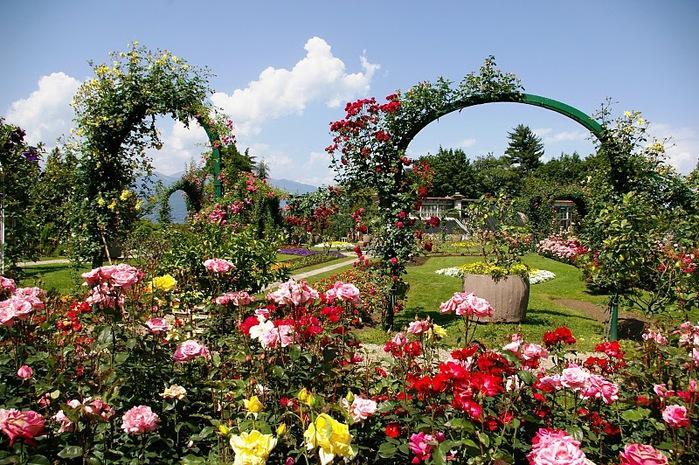 Сады Виллы Таранто 74383