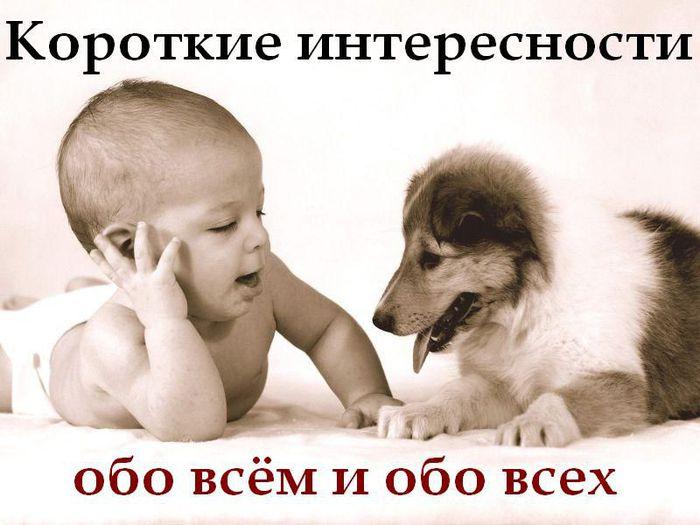 3085196_98e5bbd7f3ca15e7fc62312c1e83fbb0_1 (700x525, 53Kb)