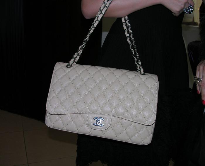 chanel bag (700x566, 69Kb)
