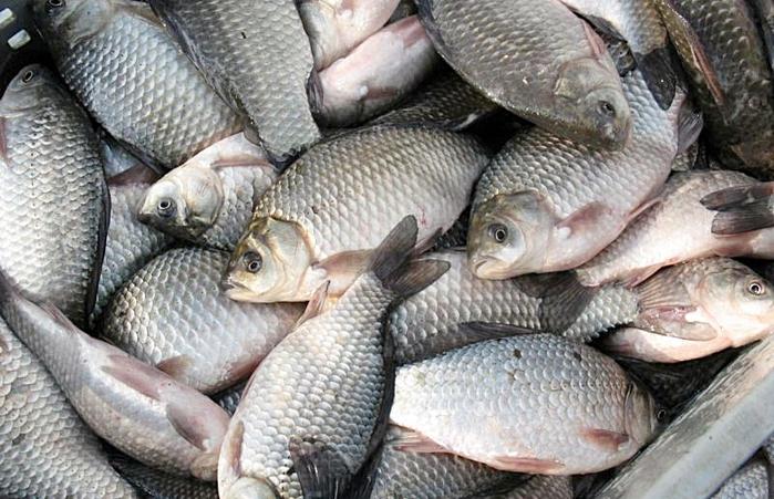 Текст объявления: Реализуем со склада в Астрахани рыбу вяленную...