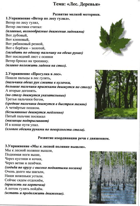 Деревья и кустарники тематическое планирование