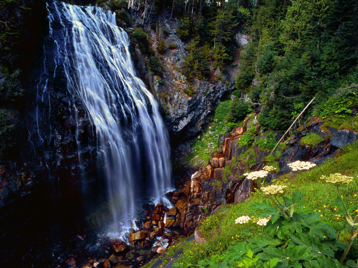 Narada Falls, Mount Rainier National Forest, Was (700x525, 219Kb)
