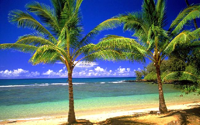 Proshots - Tropical Lagoon - Professional Photos (650x408, 670Kb)