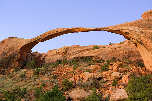 Ландшафтные арки