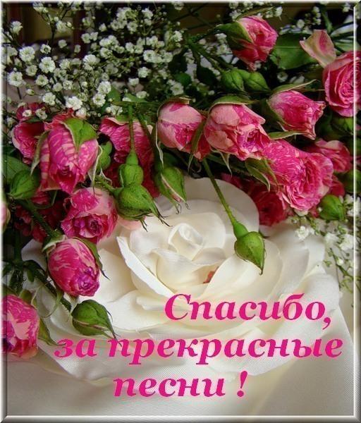 http://img1.liveinternet.ru/images/attach/c/2/73/72/73072503_spasibo_za_pesni.jpg