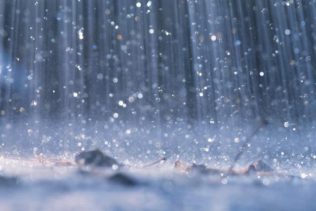 57734814_47021791_1249186853_rain (640x428, 72Kb)
