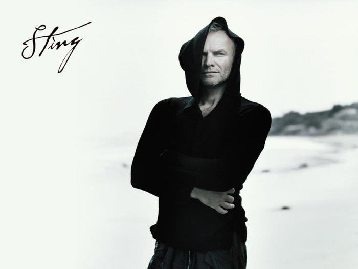 Sting-sting-59366_1600_1200 (700x525, 38Kb)