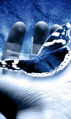 бабочка руке (240x400, 31Kb)