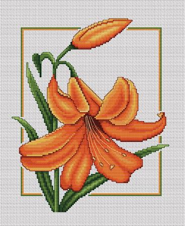 Ц-091 «Оранжевый дуэт» (368x450, 98Kb)