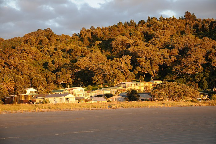 На Новой Зеландии 94424