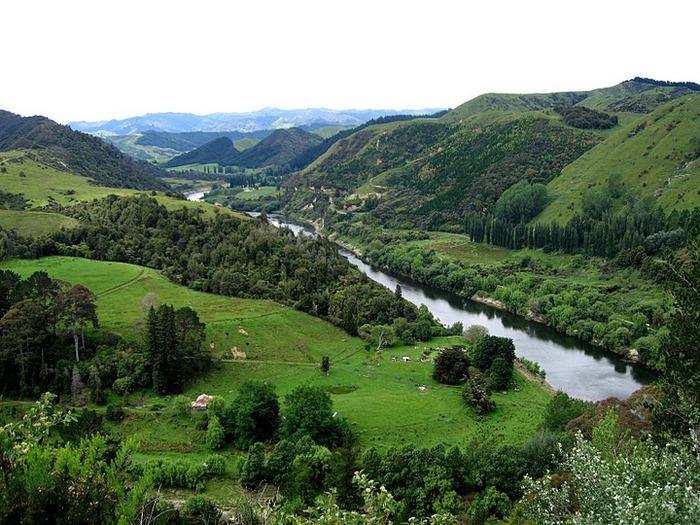 На Новой Зеландии 74006