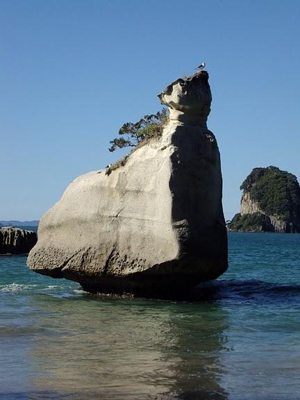 На Новой Зеландии 94924