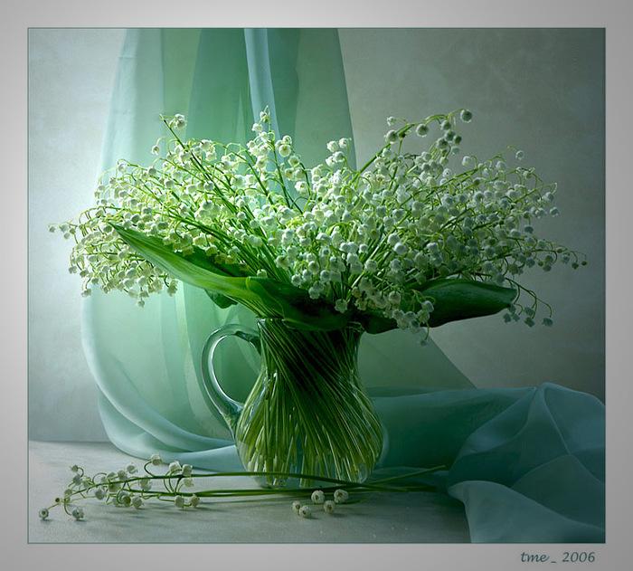 Image result for Весенние прелести картинка