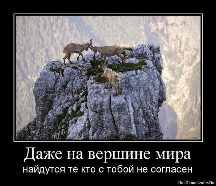 4313737_1285918210_33139_dazhe-na-vershine-mira (700x603, 94Kb)