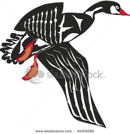 stock-vector-flying-goose-rendered-in-northwest-coast-native-style-41005582 (450x462, 50Kb)