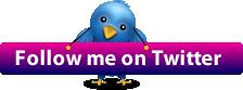 1304091627_72865965_1301573843_twitter (224x83, 8Kb)