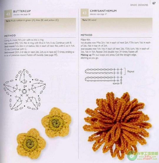 хризантема мохнатая (540x552, 44Kb)