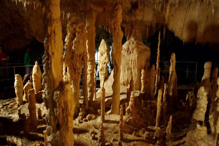 Медведь Пещера в селе Chiscau - Румыния - Bears' Cave, Chiscau, Romania, 69837