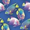 Превью 4726100_11098397_flyfische01 (100x100, 5Kb)