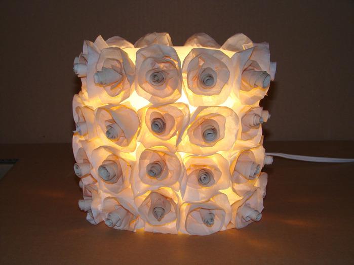 lumin rosas (13) (700x524, 108Kb)