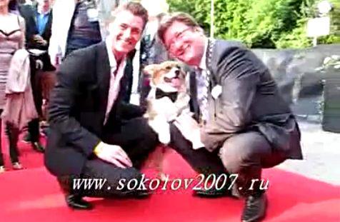 http://img1.liveinternet.ru/images/attach/c/2/74/156/74156169_PIC32.jpg
