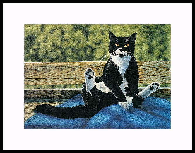 catmandrew_2036_113285772 (666x523, 112Kb)